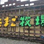 霧島神宮付近の子供向けスポット!高千穂牧場と霧島たまご牧場で癒される